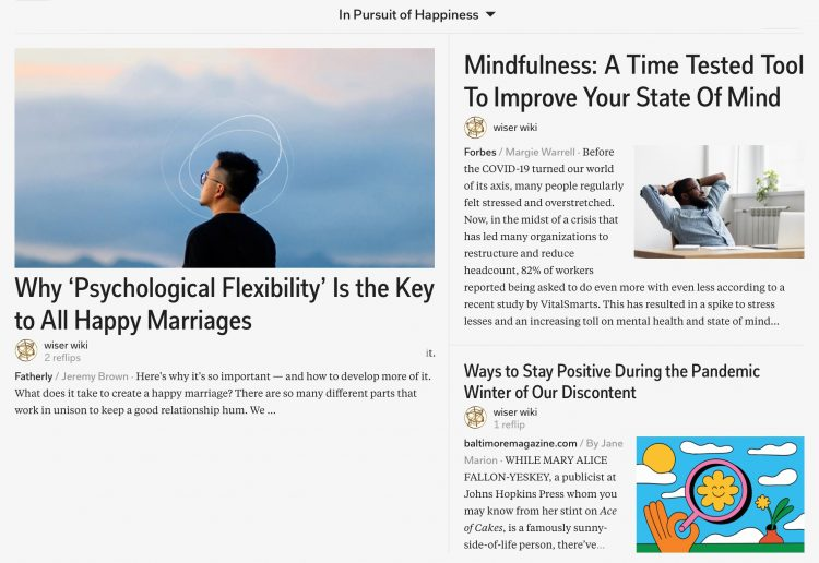 in-pursuit-of-happiness-magazine-01_wiser_wiki