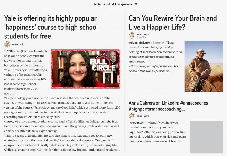 in-pursuit-of-happiness-magazine-02_wiser_wiki