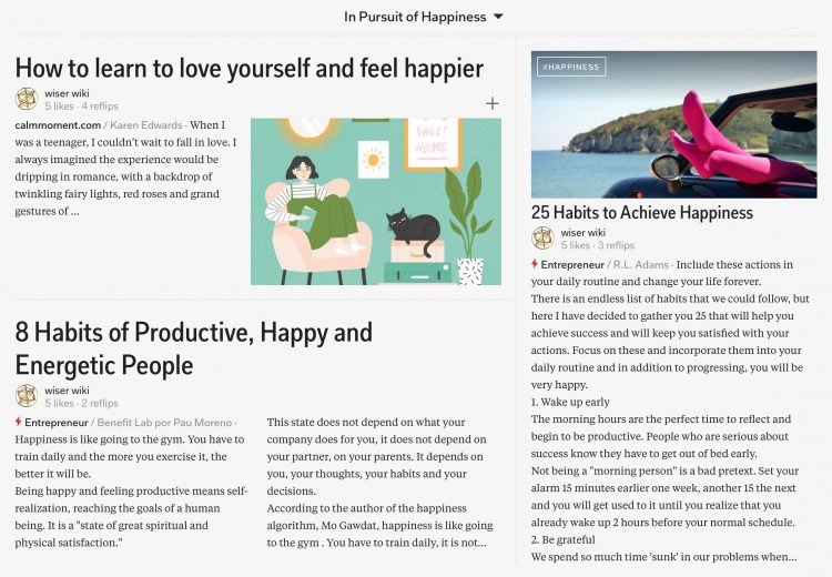 in-pursuit-of-happiness-magazine-03_wiser_wiki