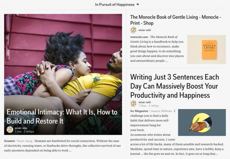 in-pursuit-of-happiness-magazine-04_wiser_wiki