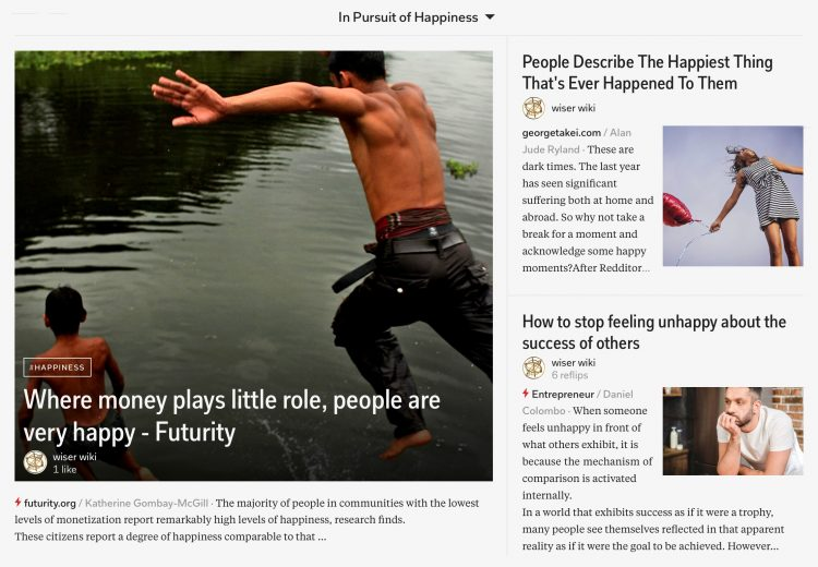 in-pursuit-of-happiness-magazine-07_wiser_wiki