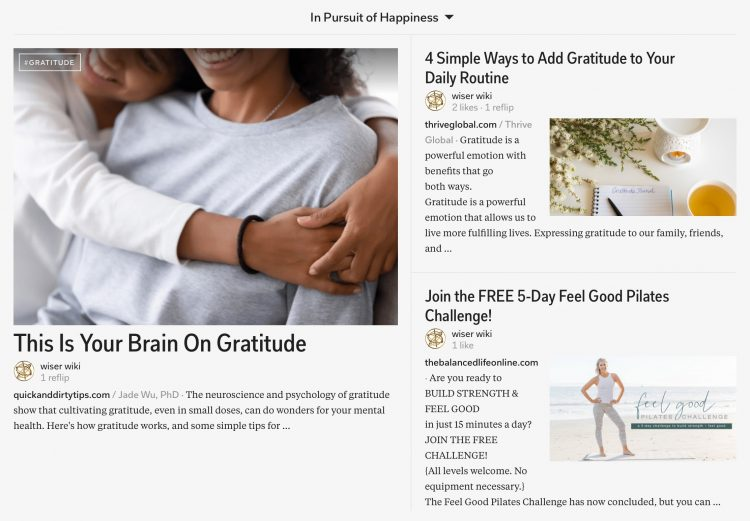 in-pursuit-of-happiness-magazine-13_wiser_wiki