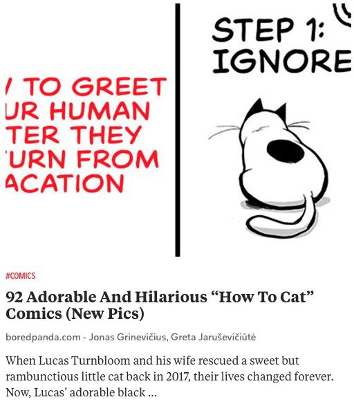 https://www.boredpanda.com/funny-cat-comics-lucas-turnbloom/
