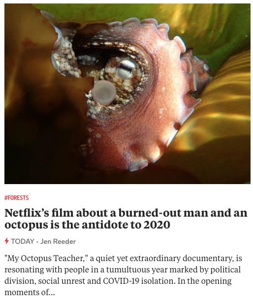 https://www.today.com/pets/netflix-s-film-my-octopus-teacher-antidote-2020-t196646