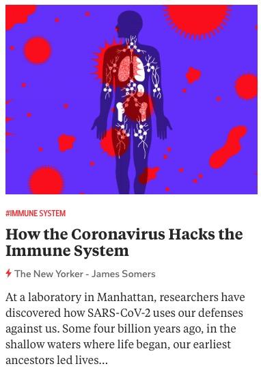 https://www.newyorker.com/magazine/2020/11/09/how-the-coronavirus-hacks-the-immune-system