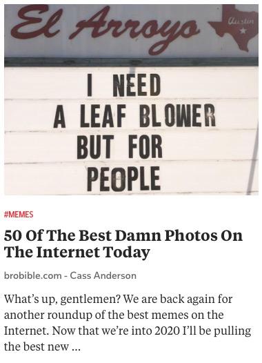 https://brobible.com/culture/article/50-best-memes-leaf-blower/
