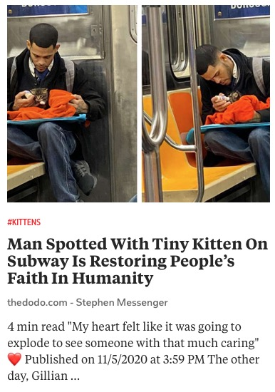 https://www.thedodo.com/daily-dodo/man-spotted-feeding-kitten-on-subway