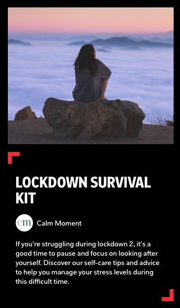 https://flipboard.com/@calmmoment/lockdown-survival-kit-acuv03iimfu06o7q