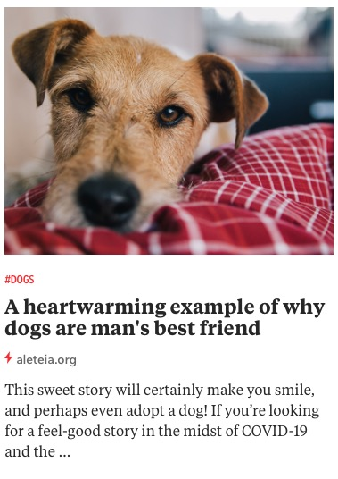 https://aleteia.org/2020/11/13/a-heartwarming-example-of-why-dogs-are-mans-best-friend/