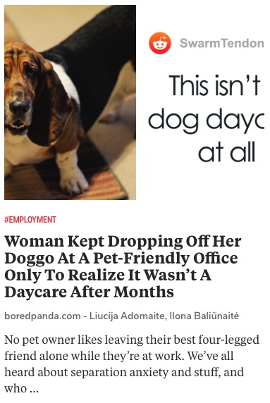 https://www.boredpanda.com/leaving-dog-in-office-mistaken-dog-daycare/