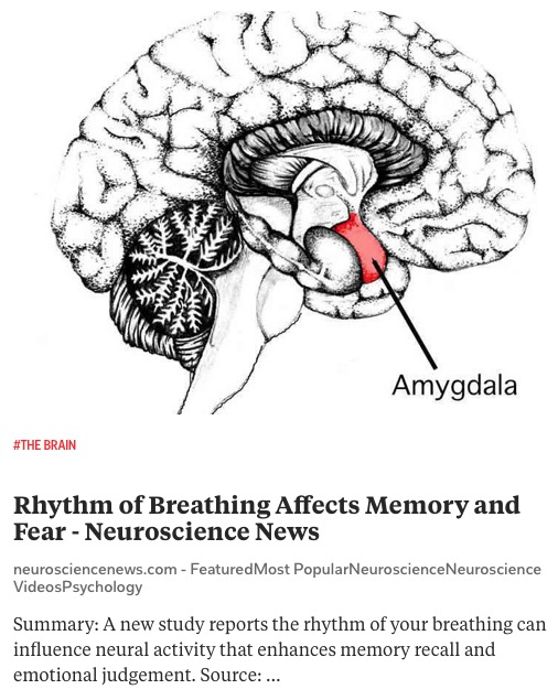 https://neurosciencenews.com/memory-fear-breathing-5699/